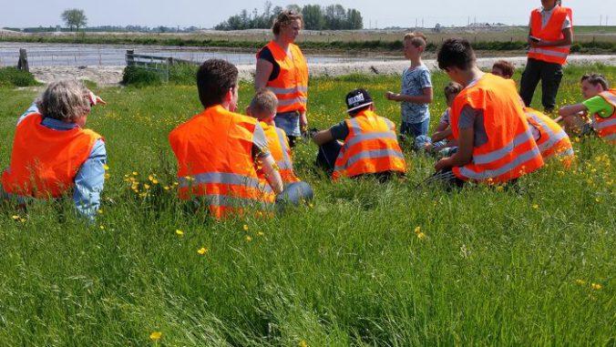 in_het_gras_drontermeerdijk_2_1