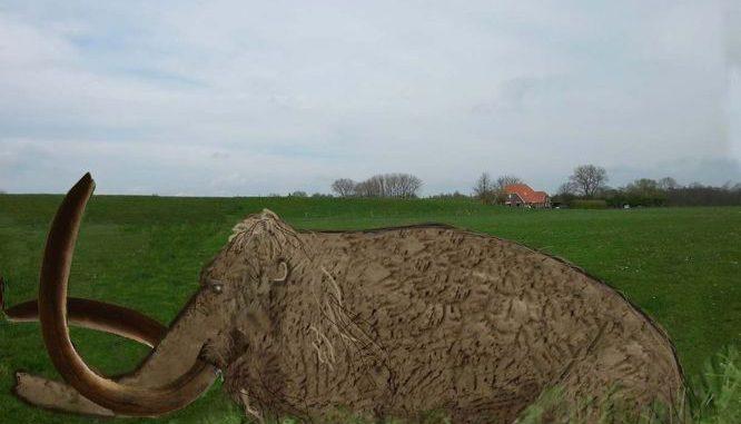 mammoet_aan_de_ijssel