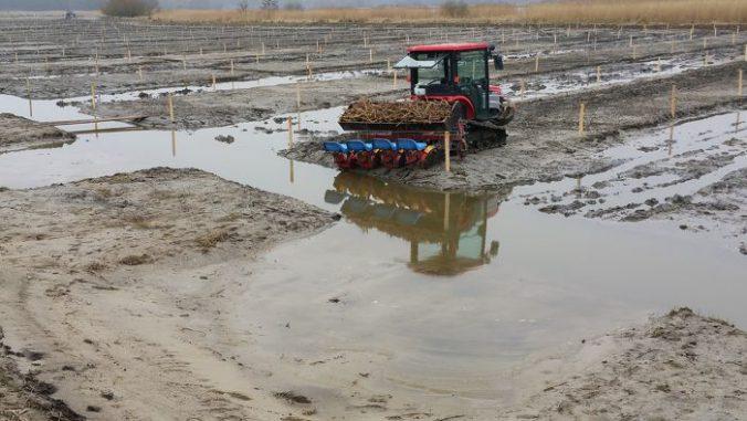 rietplantmachine_van_gebroeders_visscher