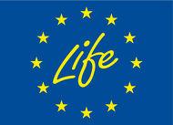 life-1