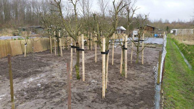 Bomen volkstuinvereniging